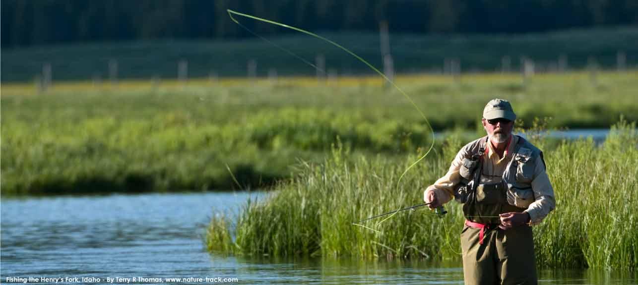 fishing-henrys-trt